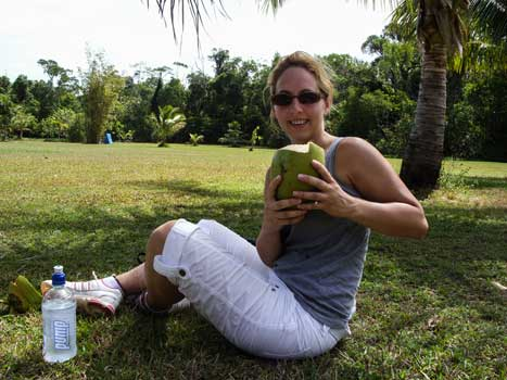 Coconut,water,travellers