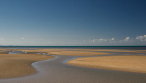 Douglas,-Queensland,-Australia