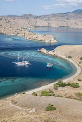 Komodo-National-Park-view