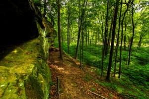 National-Park-status-has-seen-Hinchinbrook-Island