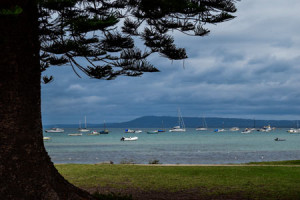 Phillips-Island-in-Melbourne