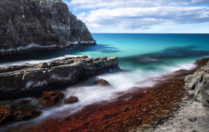 travel-hints-and-tips--to-mornington-peninsula