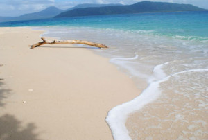 travell--tips-to-fitzroy-island