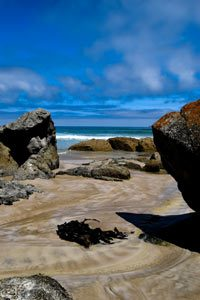 traveller-hints-at-wilson-promontory