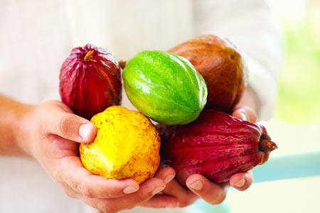 Cacao-Sri-Lanka