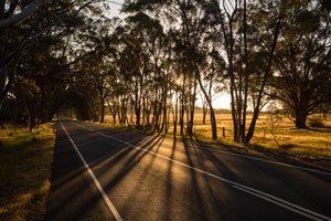 Green-road-Bendigo