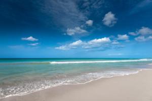 travelling to the Sunshine Coast