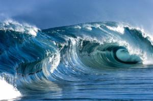 Top Surfing