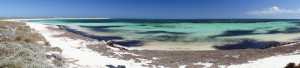 Abrolhos-Islands-Beach