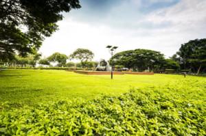 Green-Riza-park Manila
