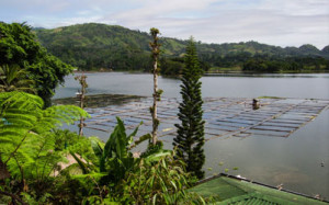 Lake-Sebu