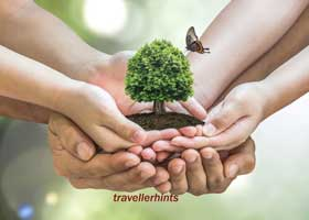 Professional Traveler Ethics
