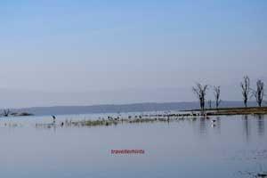 Lake Natron in Arusha