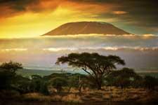 Amboseli National Park - Kilimanjaro