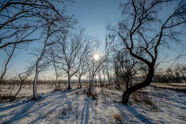 Chernivtsi Tour In Western Ukraine